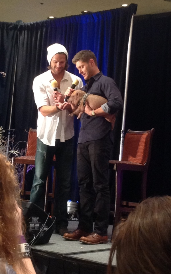 Jared, Jensen and Icarus the pig