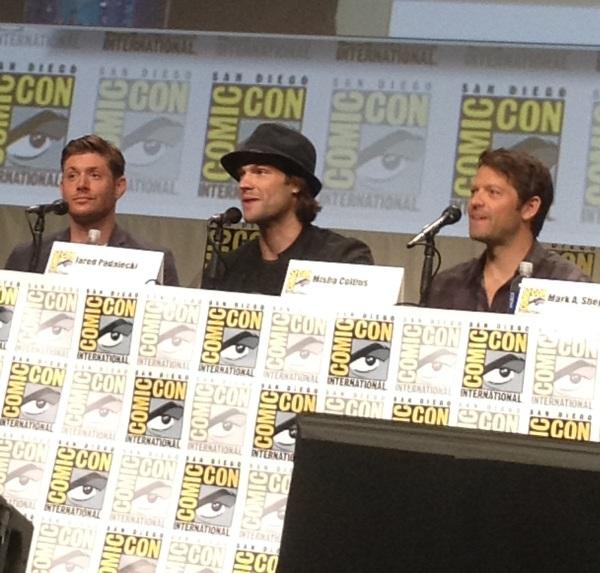 panel boys2