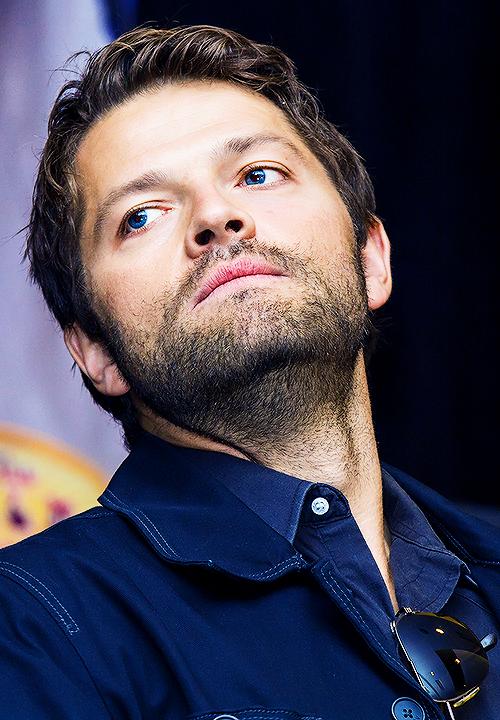 Misha and those pretty eyes (photo Karen Cooke)