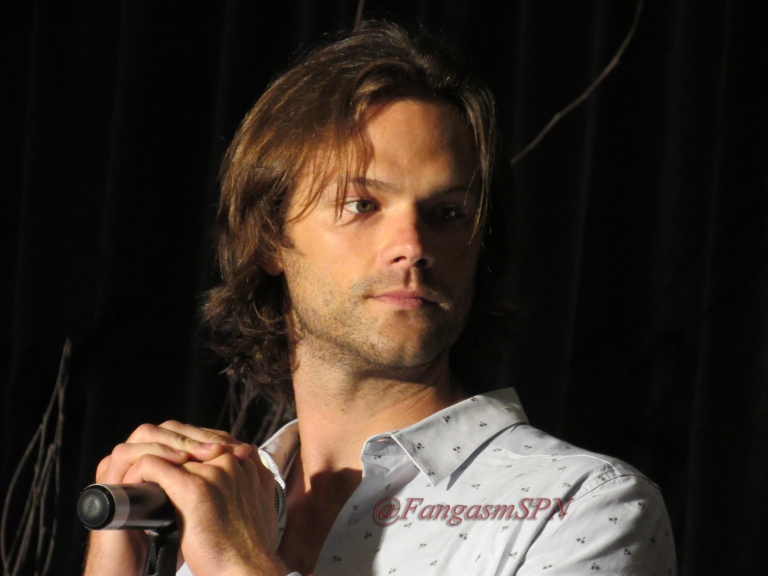 Comic Con and DCCon 2015 602