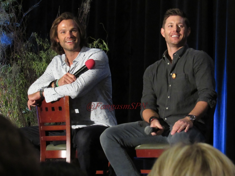 Comic Con and DCCon 2015 691