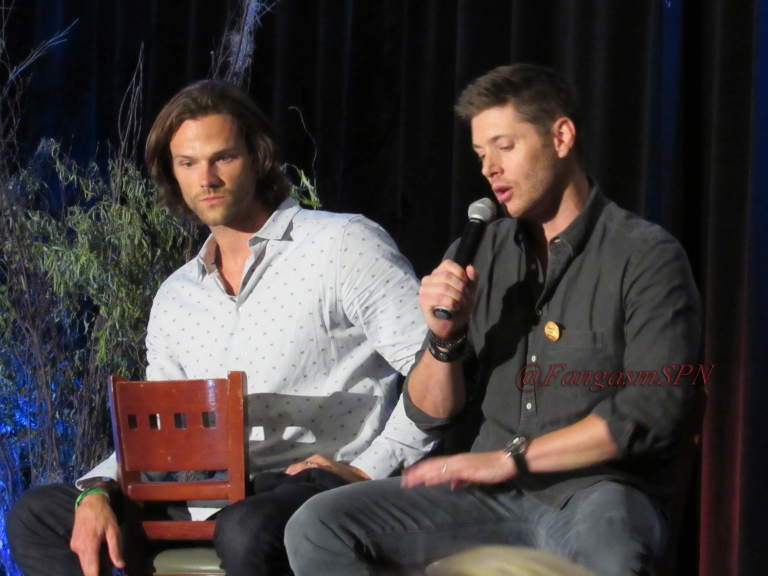 Comic Con and DCCon 2015 692