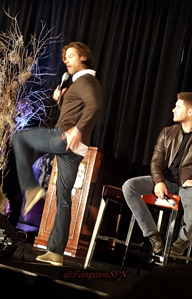 chicon_phone_2015_356_WM