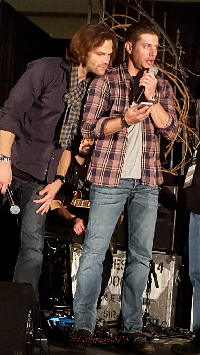 pascon_2015_phone_2_264_WM
