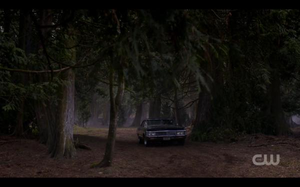 11.19 9 woods impala