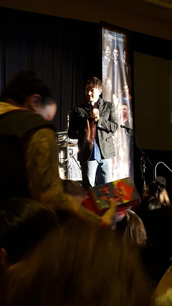 Misha and the cookie crowd