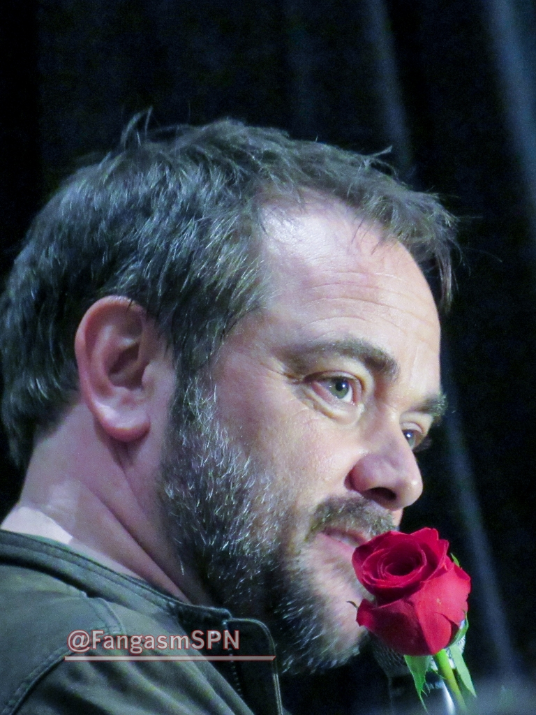 Mark with the rose a fan gave him